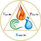 Vata / Pitta / Kapha